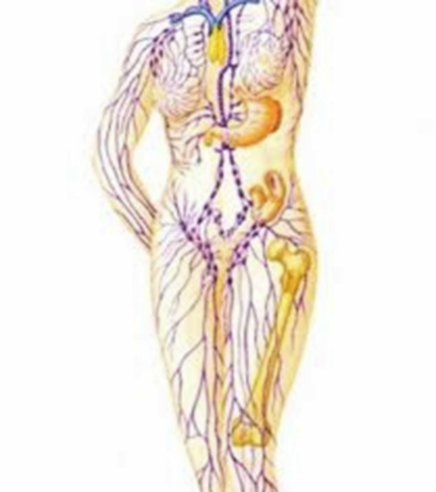 How do you know when you need Lymphatic Drainage Massage? - DNS Colon